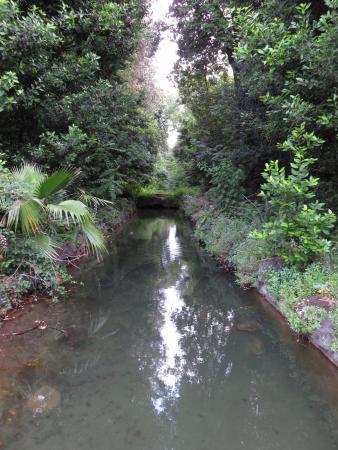 Castelluccia: vista del canale verso la Peschiera vecchia