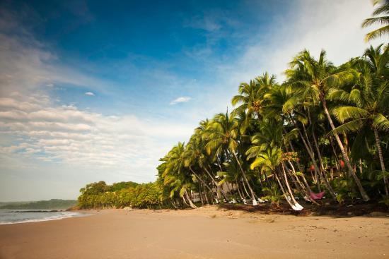 Tambor, Kosta Rika: Hotel Beach