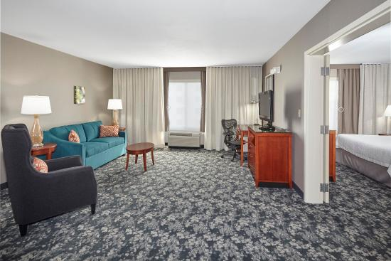 Hilton Garden Inn Schaumburg: King Suite