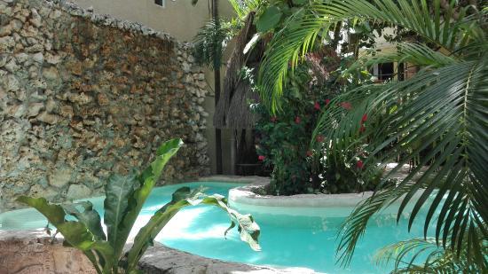 Hotel Playa del Karma: IMG_20160603_114709_large.jpg
