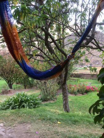 La Casa Del Conde : one of the garden areas