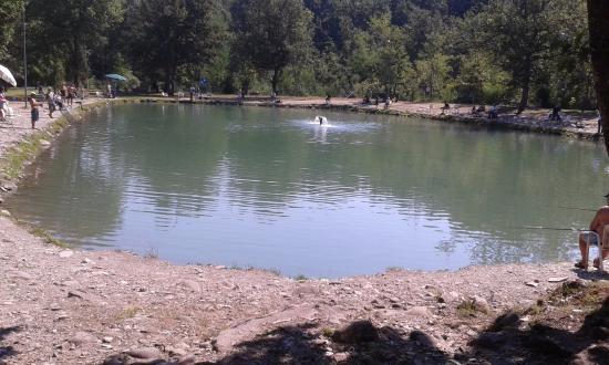 Pavullo Nel Frignano, Italien: LAGHETTO PESCA ALLA TROTA