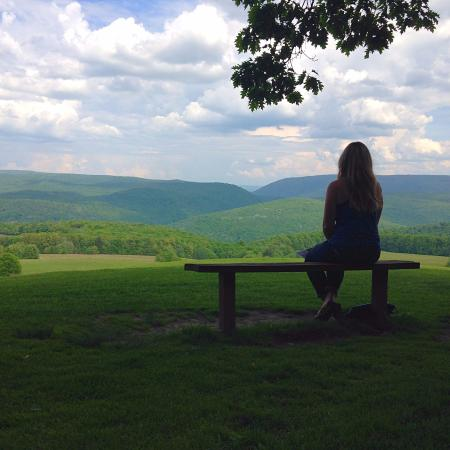 Chalk Hill, PA: View from the house