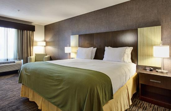 Holiday Inn Express Hotel & Suites North Fremont : Guest Room