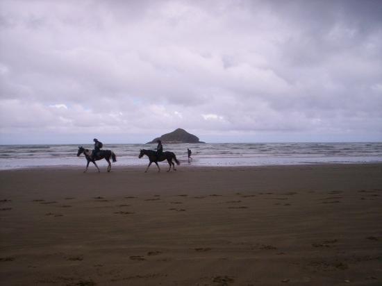 Kaitaia, Νέα Ζηλανδία: 90 mile beach