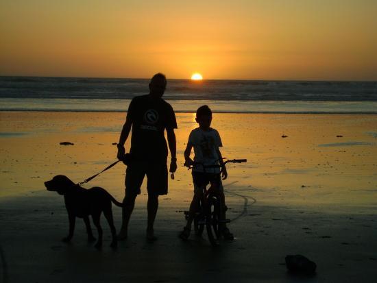 Kaitaia, Νέα Ζηλανδία: summer sunset