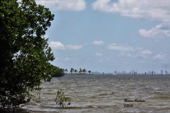 Beautiful view of downtown Miami from Matheson Hammock Park