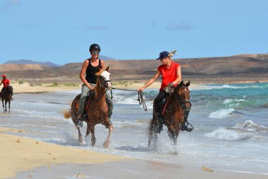 Santa Marilha Horse Excursions: Beach ride
