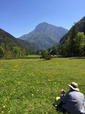 Solcava valley