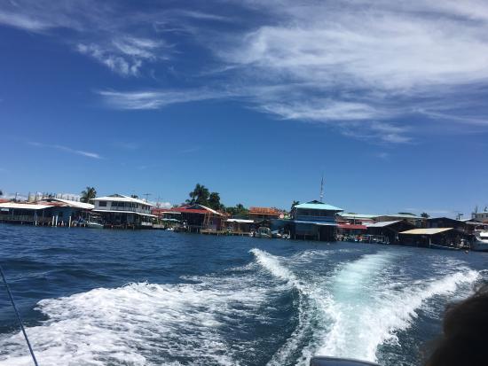 Red Frog Beach Island Resort & Spa: photo2.jpg