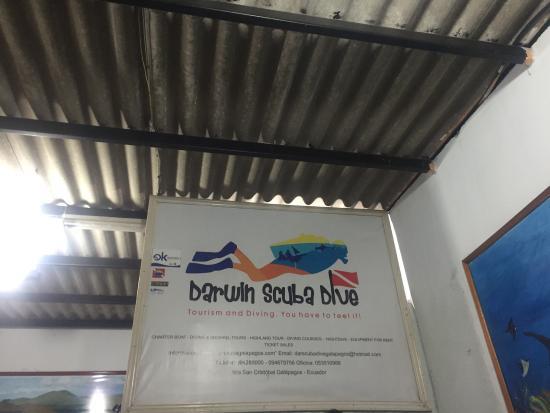 Darwin Scuba Dive: photo4.jpg