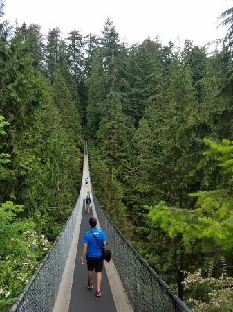 Kuzey Vancouver, Kanada: 20160603_091032_large.jpg