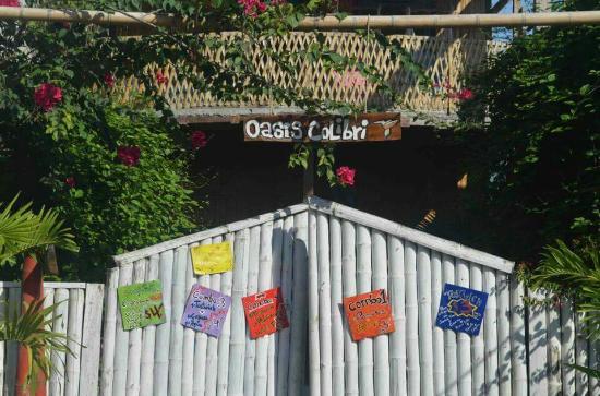B&B Oasis Colibri