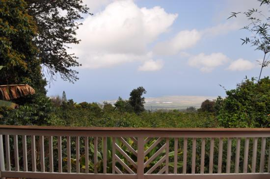 Holualoa, Hawái: View from the main lanai- where breakfast is served
