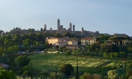 Locanda Viani: View from terrace overlooking San Gimignano city skyline