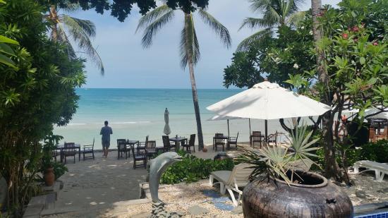 Samui Paradise Chaweng Beach Resort Spa Photo