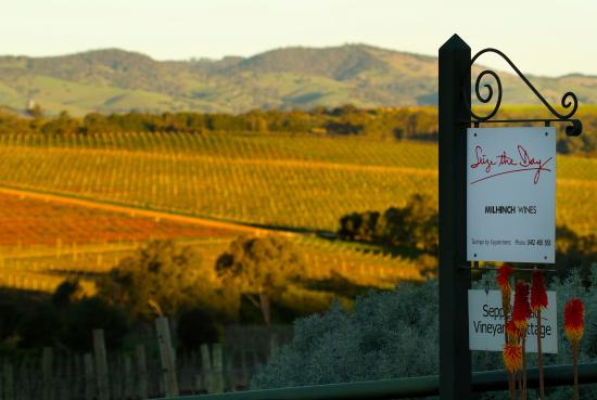 Entrance to Seize the Day Wines