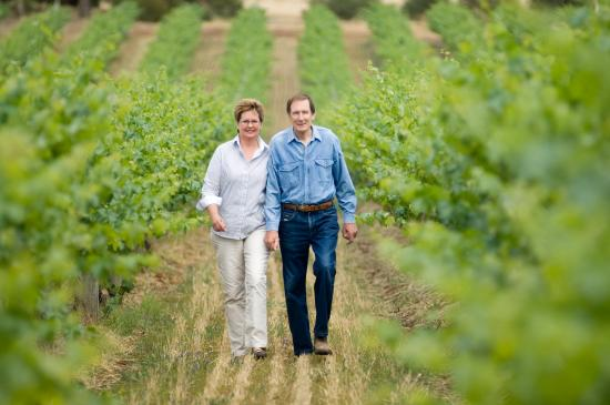 Seize the Day Wines: Our 10 acre vineyard