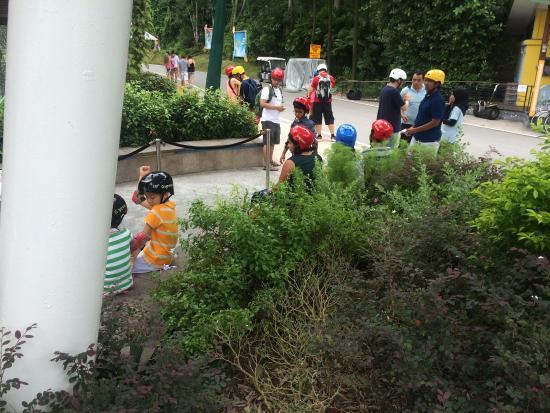 Gogreen Segway Eco Adventure : photo0.jpg