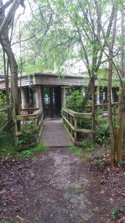 Hill Holt Wood