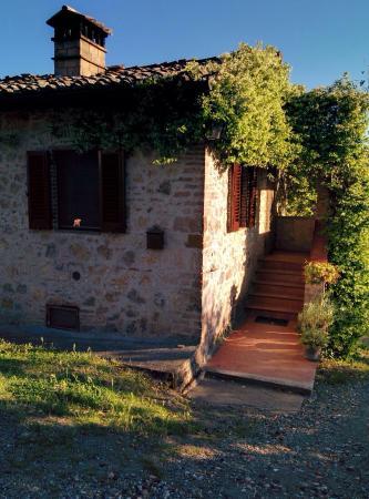 Agriturismo Podere Cappella: photo1.jpg