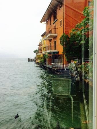 Garden: The view in the rain