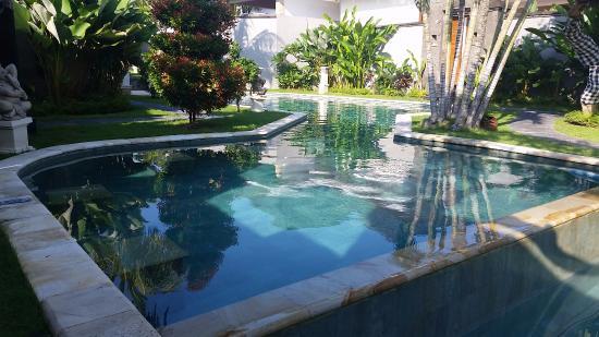 Bali Nyuh Gading Villa: Public Pool