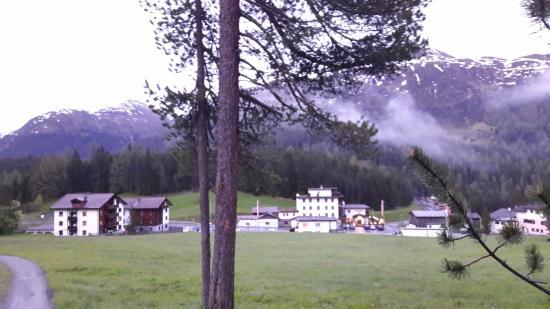 Wolfgang, Suiza: Tolle Lage um mit dem Hund Spazieren zu gehen