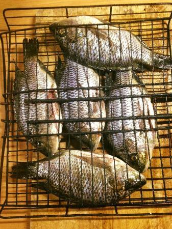 Amangwane - Kosi Bay : Vis braai, verse vis van de markt