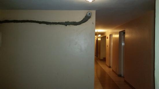 Olive Gardens Hotel: View of the corridors (1st floor)