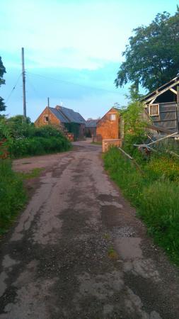 Llangwm, UK: DSC_0997_large.jpg