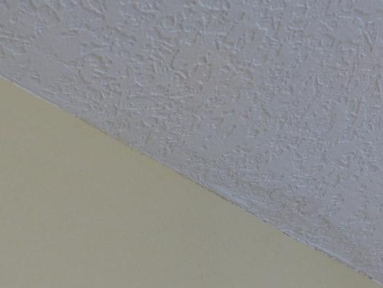 Crowne Plaza Orlando Universal: Wet ceiling