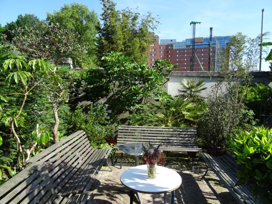 Botanische Tuin Amsterdam : Vu hortus buitenveldert foto van botanische tuin zuidas