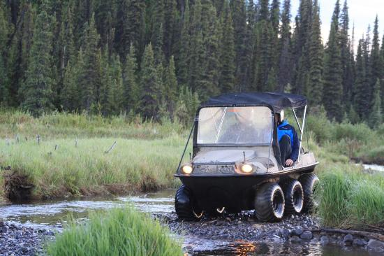 Denali Tundra Tours Argo/ATV Tours of Iconic Stampede Trail