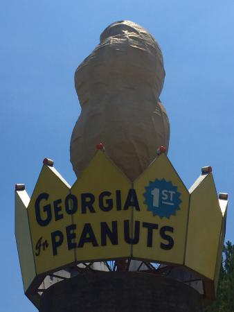 Ashburn, GA: photo1.jpg