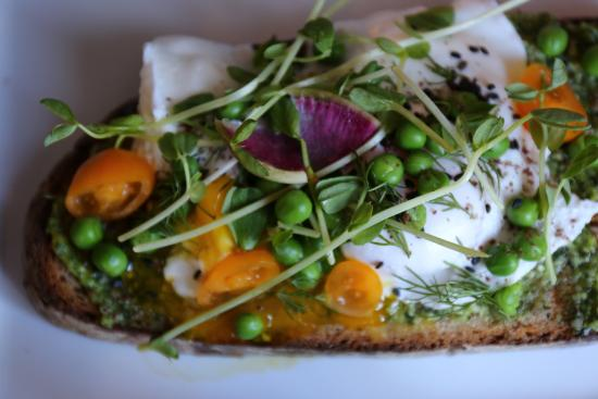 Williamstown, MA: Poached Egg Tartine