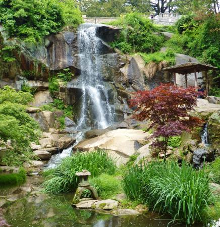 The Waterfall In The Japanese Garden At Maymont