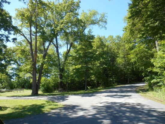 Gouldsboro, PA: Wonderful Summer Greens