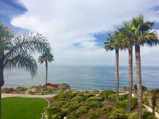 Dolphin Bay Resort & Spa: photo1.jpg