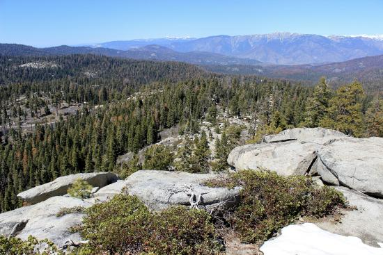 Buena Vista Peak Trail