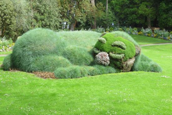 Chat qui dort - Picture of Jardin des Plantes, Nantes - TripAdvisor