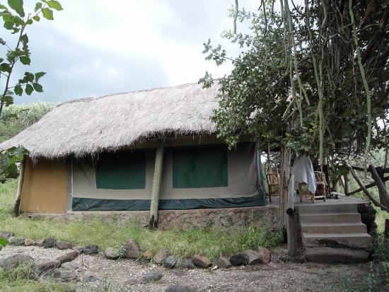 Ol Mesera Tented Camp: tent and teracce, Ol Mesera