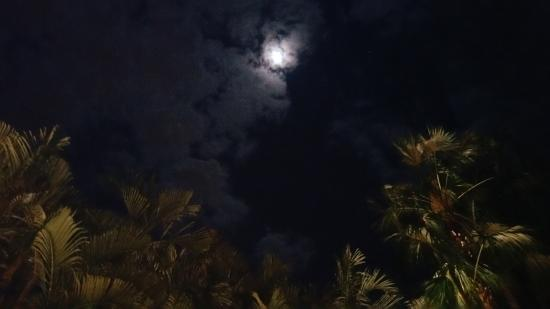 Simonton Court Historic Inn and Cottages : Under the Key West Moon from rooftop balcony of our room