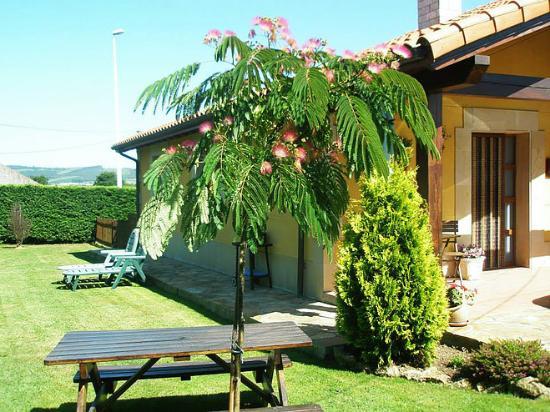 Casa rural tamar a somo cantabria opiniones y fotos del chalet tripadvisor - Casa rural somo ...