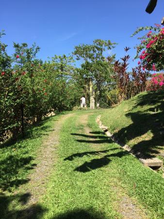 Sepilok Forest Edge Resort: photo1.jpg
