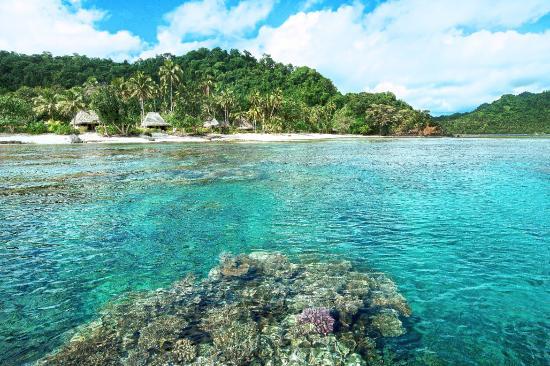 Qamea Island, Fiyi: Full View of the Resort