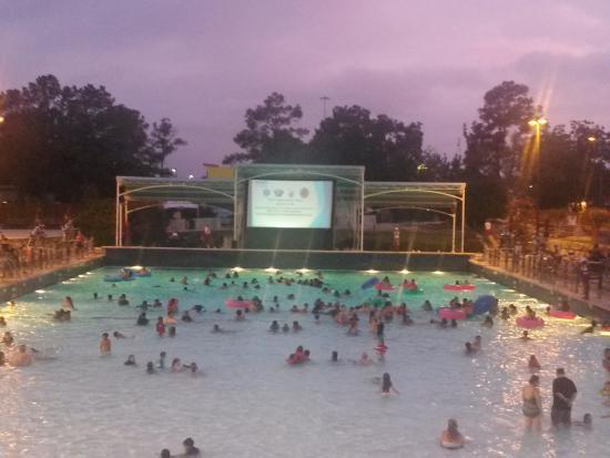 Fun Dive In Movies Picture Of Wet N Wild Splashtown Spring