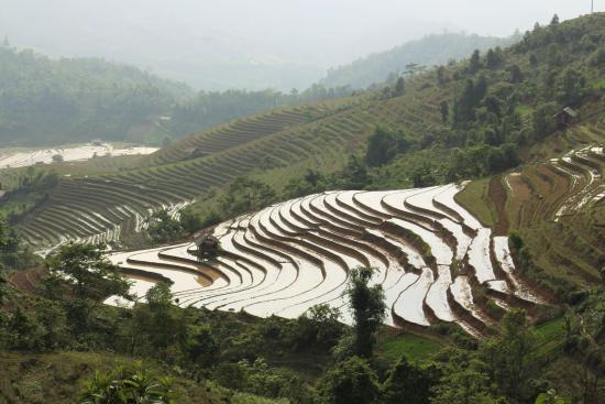 Muong Hoa Valley: Lao Chai village