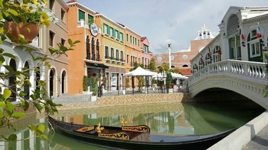 Venice Di Iris