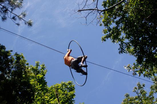 Monkey Forest: cerceau du parcours noir